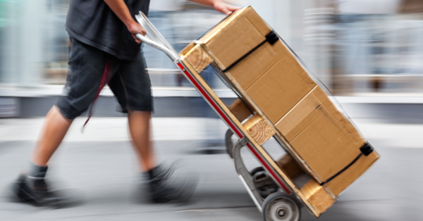 E-commerce Shipping: Feeling the Need for Speed Infographic